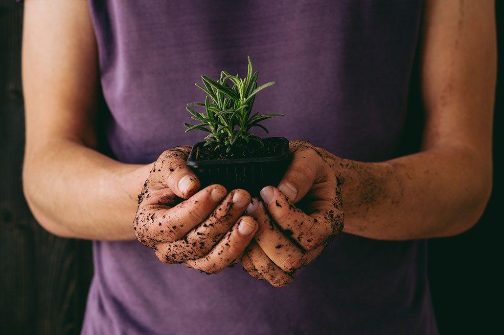fall-gardening-tips-01-1030x686